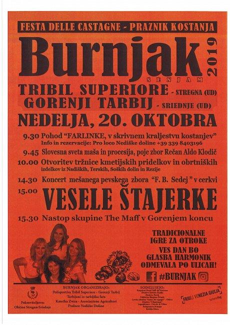 Burnjak 2019